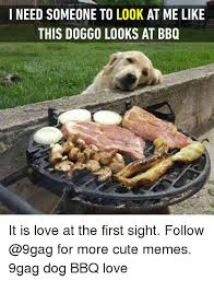 Bbq Meme - i need someone to look at me like this doggo looks at bbq it is love