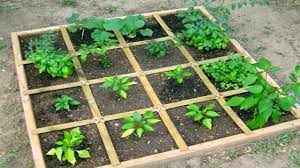 how to design vegetable garden how to plan a square foot vegetable garden the easiest way to grow