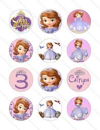 disney princess sofia custom birthday krittskreations