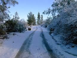 shingletown ca country road in winter in shingletown photo