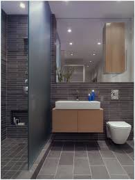 Bathroom Ideas Contemporary Bathroom Handicap Bathroom Designs Fantastic Bathroom Design A