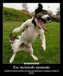 Memes Funny En Espaã Ol - 82 best memes en espa祓ol images on pinterest chistes funny