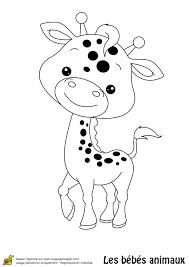 un bébé girafe arborant un petit sourire à colorier coloriages