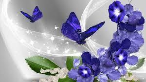 two purple butterfly with purple petaled flowers illustration hd