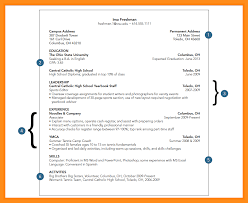 Best Student Resumes by Interesting Freshman College Student Resume 65 On Modern Resume