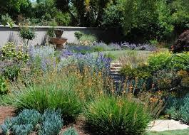 landscaping ideas texas hill country u2013 izvipi com