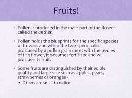 Part Of Flowers - flowers make fruits u0026 seeds basic vocab what is fertilization