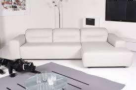 e schillig sessel sam sofa hellgrau leder stoffcouch sofa couch stoff grau leder weiss