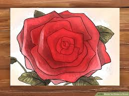 3 ways to draw a rose wikihow