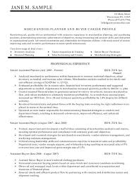 Best Resume Summary Examples by Resume Statements Examples