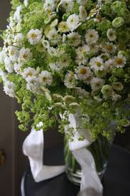 56 best june white flowers images on pinterest white flowers