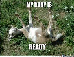Sexy Sloth Meme - rmx sexy goat by nitzz meme center