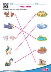 science animal food worksheets kindergarten