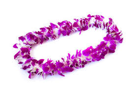 Leis Flowers - sonoma state branded kukui nut necklace graduation day flowers