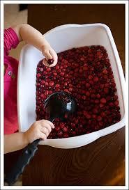 162 best assorted sensory bins images on sensory play