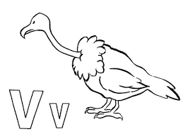 alphabet coloring pages animal vulture alphabet coloring pages