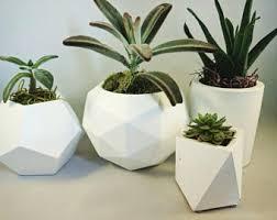 Indoor Plant Vases Concrete Planter Etsy