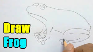 how to draw a frog very easy youtube