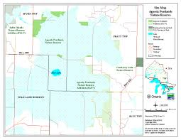 Utm Zone Map Agassiz Peatlands Provincial Park Management Statement Ontario Ca