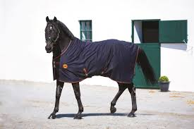 horse therapy rugs