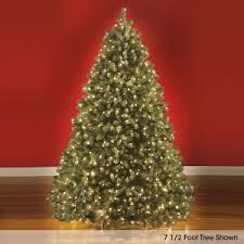 choosing the perfect christmas tree hammacher schlemmer blog