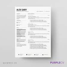 Professional Resume Templates Professional Resume Template U2013 Simple Resume Templates For
