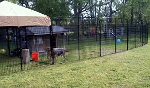 k9 kennel store photo gallery
