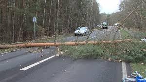 Wetter Bad Pyrmont 14 Tage Sturm Und Orkanböen Niklas Fast So Stark Wie Kyrill 2015 News