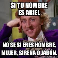 Ariel Meme - meme willy wonka si tu nombre es ariel no se si eres hombre