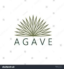agave vector design template stock vector 251559379 shutterstock