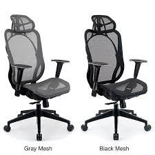 Ergonomic Mesh Office Chair Design Ideas Integrity Seating Ergonomic Mesh High Back Executive Office Chair