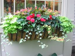 one of my summer window boxes chicita house garden plans