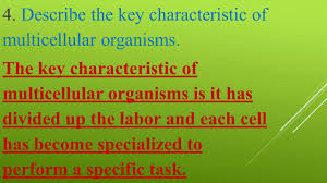 multicellular organisms u0026 organization of organisms and cell