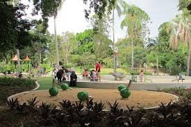 Botanical Gardens Brisbane Cafe City Botanic Gardens Playground Cbd Must Do Brisbane