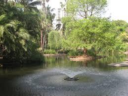Brisbane City Botanic Gardens by 5 Fantastic Brisbane City Water Features And Fountains Brisbane