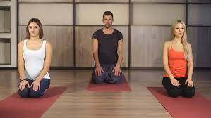 group of people making yoga exersice stock footage video 22119475