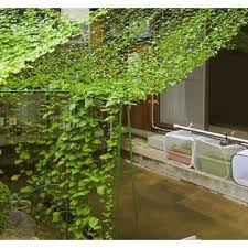 Garden Trellis Netting Ecotrellis Tn36w6l10g Heavy Duty Pe Plant Trellis Netting Green