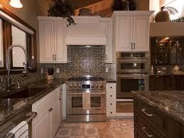 Inexpensive Kitchen Cabinets Kitchen Cabinets Amazing Cheap Kitchen Renovations