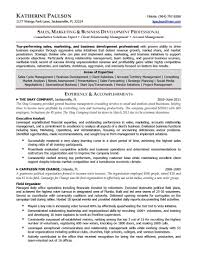 business development executive resume best ideas of senior marketing manager resume beautiful business