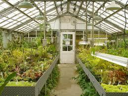 home greenhouse plans home decor ideas