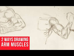 drawing arm muscles in 2 ways youtube