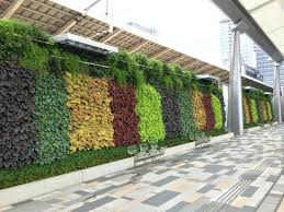 wall ideas diy artificial living wall soil based system diy