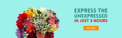 cheap flowers to send send flowers online cheap canada flower inspiration