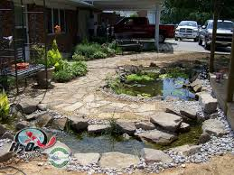 small backyard pond designs