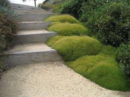 Landscape Mounds Front Yard - mounds will bring magic to your garden outdoortheme com