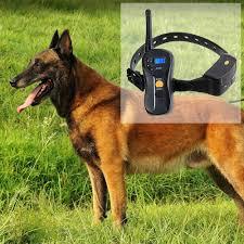 belgian sheepdog jewelry amazon com shock collar for dogs dogloveit 660yd blind