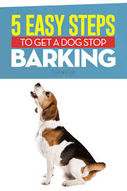 dog barks when we leave how to get a dog to stop barking 5 most effective methods