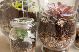 beachy centerpieces learn how to make terrariums for your wedding