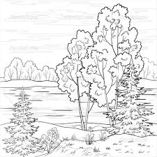 forest landscape coloring pictures scenery nature