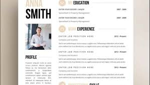 successful resume templates resume impressive resume templates creative e 1 the best cv